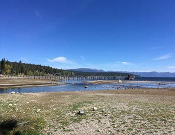 A River Runs Through It In North Lake Tahoe