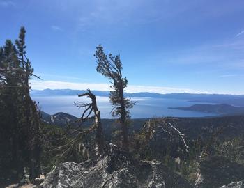 Be Adaptive How to enjoy Lake Tahoe